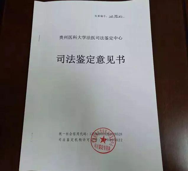 侦探事务所 伪造亲子鉴定书调查继续,广州市司法局启动了调查程序,中介客